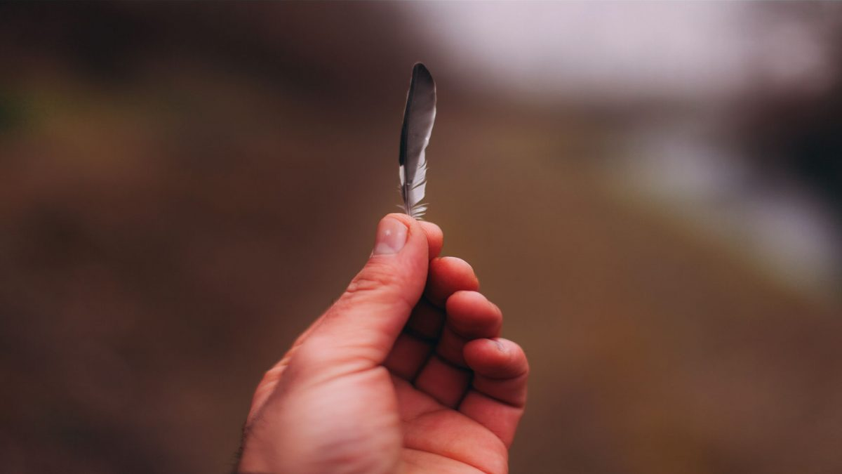 feather in hands